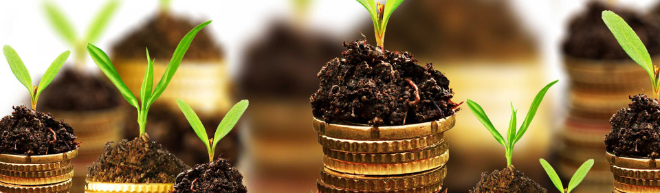 making your business more sustainable doesn't have to be expensive or hard